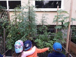 Kinder vor einem Hochbeet